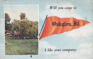 Pennant Series Oakglen Illinois 1919