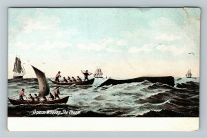 The Chase During Sperm Whaling, Vintage Postcard