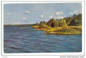 Sestroretsky-Razliv Lake, 50-60s