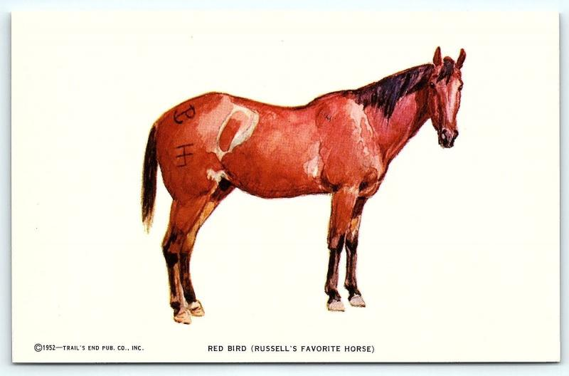 Postcard A/S 1952 Trail's End Artist Charles M Russell Red Bird Favorite Horse