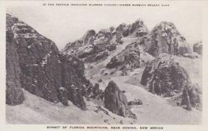 New Mexico Deming Summit Of Florida Mountains Albertype