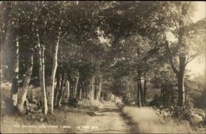 Antrim NH Birches Greystone Lodge c1910 Real Photo Postcard