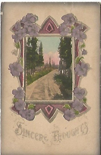 Purple Pansy Pansies Sincere Thoughts Country Lane Antique Postcard 1912
