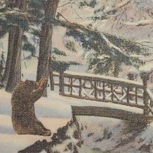 Postcard Bear Snow Bridge Where Summer Trail Divides Standish Michigan Linen 81