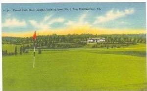 View #1Tee, Forest Park Golf Course, Martinsville, Virginia, 30-40s