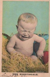 Vintage Postcard The Nightingale Printed in England Bamfort &Co series#1060