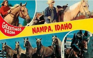 ID, Nampa, Idaho, Multi View, Horses, Colourpicture No. P36158