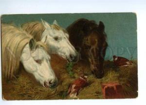 132495 Three HORSES in Stable w/ PIGEONS vintage Color PC