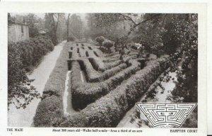 Middlesex Postcard - The Maze - Hampton Court - Ref 9096A
