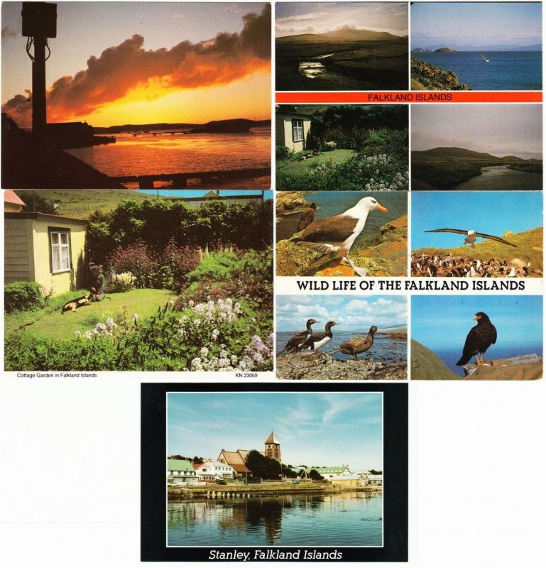 Falkland Islands Lot of 13 Postcards 1980s-1990s
