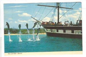 Dolphins jump , Sea life Park , Hawaii , 50-70s