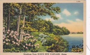 Maine Greetings From North New Portland 1938 Curteich
