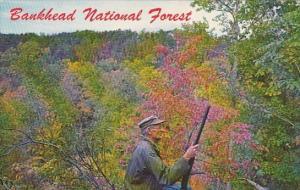 Alabama Hepsidam Halls Hollow Bankhead National Forest