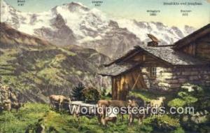 Jungfrau Swizerland, Schweiz, Svizzera, Suisse Sennhutte  Sennhutte