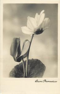 Flower ornament photo postcard Buaon onomastico greetings fleur