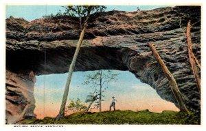 Kentucky   Natural Bridge