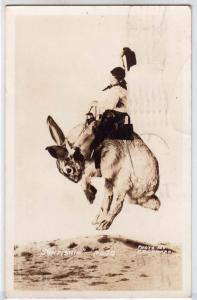 RPPC, Extravaganza - Cowboy Riding a Rabbit