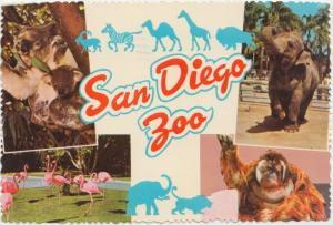 San Diego Zoo, Orangutan, Elephant, Koala bear & Flamingo, used Postcard