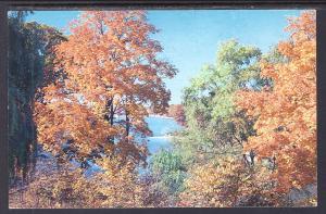 East Bay,Lake Bloomington,Hudson,IL BIN