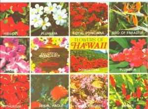 USA, Flowers of Hawaii, 1980s unused Postcard