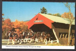 Clydesdale Horses Passing Through Covered Bridge,Jackson,NH