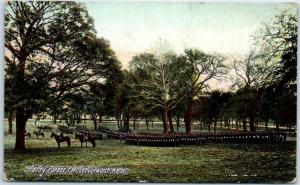 Fort Leavenworth, Kansas Postcard Infantry Parade U.S. Army Base 1908 Cancel