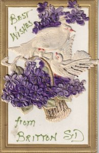 Handmade Postcard, Applique of Doves & Basket of Violets, Best Wishes, 1900-10s