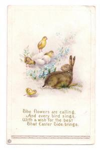 Easter Rabbit and Chicks Embossed Stecher 1916 Poem Postcard