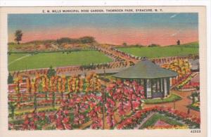 New York Syracuse E M Mills Municipal Rose Garden In Thornden Park