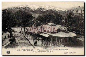 Postcard Old Perpignan Panoramic view of the Palmarium and Canigou