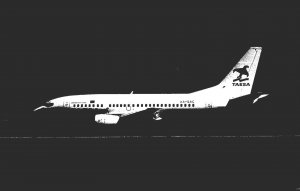 TAESA Boeing B-737-500