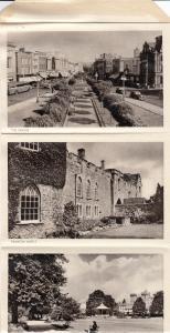 TAUNTON , England, 20-40s ; Lettercard