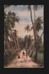075902 CEYLON Sunset amongst Palms Vintage Plate PC