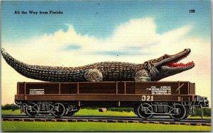 1940s Florida ALLIGATOR EXAGGERATION Postcard Big Gator on Rail Car Linen Unused