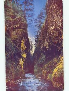 Vintage Post Card C1062 Oneonta George Columbia River Highway  OR  # 4979