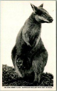 AUSTRALIA Photo RPPC Postcard WALLABY WITH JOEY in Pouch Rose Series c1920s