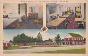 Georgia Jesup Camellia Courts Inc