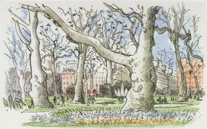 Russell Square London in Spring Dog Feeding Painting Postcard