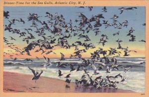 New Jersey Atlantic City Dinner Time For The Sea Gulls 1965