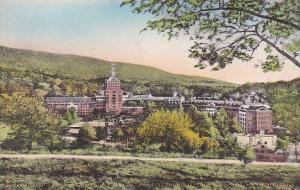 The Homestead Hotel From Sunset Hill Hot Springs Virginia Handcolored Alberype