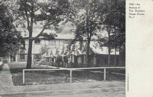 OCEAN GROVE , New Jersey , 1901-07 ; An Avenue of Tent Dwellers