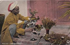 INDIA, 1900-10s ; Malee (Gardener)