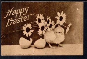 Happy Easter Chick BIN