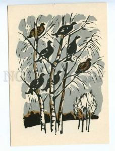 238754 RUSSIA HUNT Zakharov partridges on birches engraving
