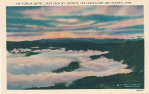 Sunrise from Mt. Leconte Great Smoky Mountains - TN Tennessee (or N.C.)