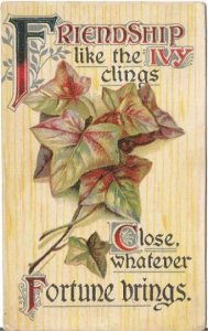 Yellow Wood grain Background with Ivy Leaves Stems Friendship Vintage Postcard