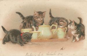 Four Curious Kittens investigating a tea set, PU-1904