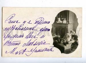 190032 White SPITZ in Armchair FIREPLACE Vintage REAL PHOTO