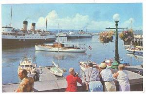 Scenic view of Victoria's Inner Harbour, with steamers arriving, Victoria, B....