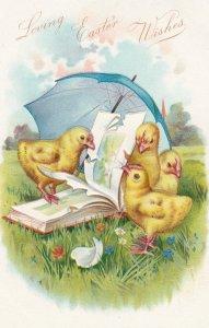 Easter Chicks w/ Umbrella , 00-10s